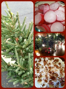 1. Tiny baby Christmas tree that I had to snap a picture of! 2. Christmas in a bowl: Radishes, 3. Lights!, 4. Pumpkin-gingerbread cake